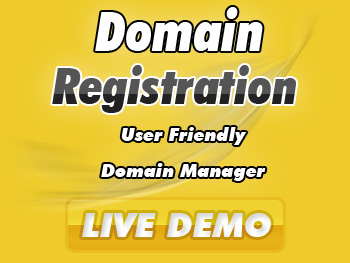 Economical domain name service providers